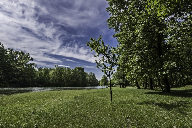 Cielo-nel-verde